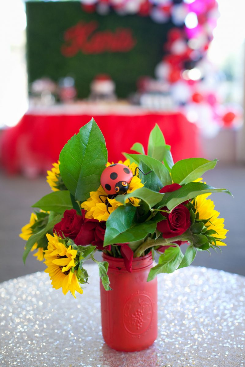 according to q ladybug themed baby shower